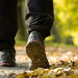 What Taking-a-Hike Can Teach Us About Business